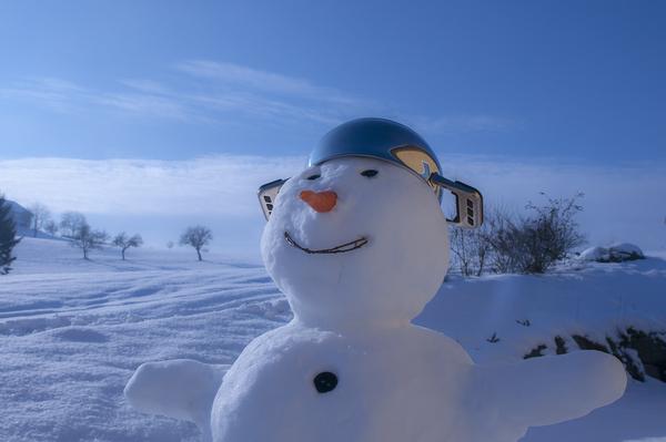 snowman 590386 1920